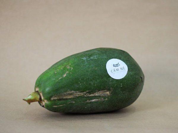 Cam Ne green papaya