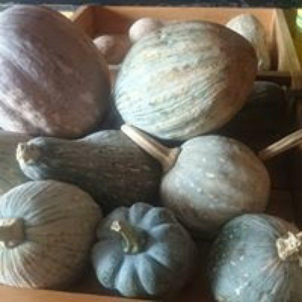 Smile Farm gourd