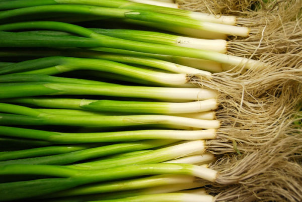 Smile Farm Spring Onion